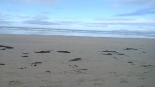 Surfers and the Longest Beach I've Been on in Ireland