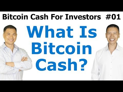 Bitcoin Cash For Investors #1 - What Is Bitcoin Cash? - By T