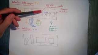 Inmunocromatografía - Detección de Anticuerpos [Parte 2]