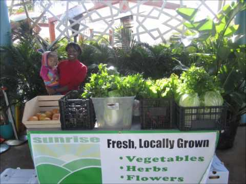 Terra Preta Organic Farm