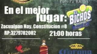 Banda Zacualpeña El bichos zacualpan nayarit 2013
