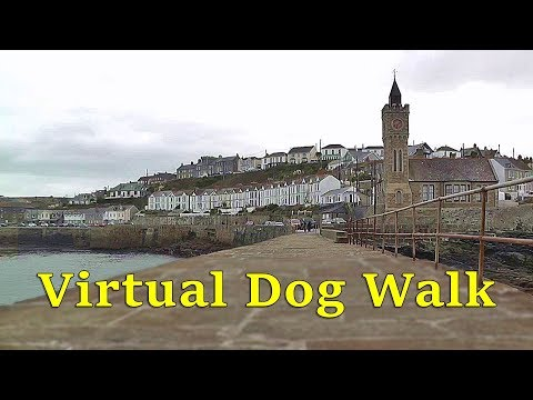 Walk Your Dog TV : TV for Dogs - Virtual Dog Walking at Porthleven