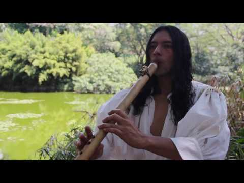 The Last of the Mohicans Main Theme - Instrumental Music with Native Flutes