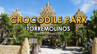 Crocodile Park, Torremolinos Spain 2016