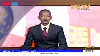 ERi-TV, Eritrea - Arabic News for February 19, 2019