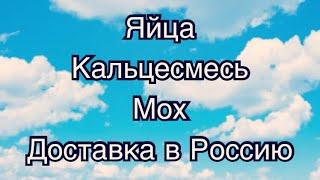 ОТВЕТЫ! УЛИТЯТА, МОХ, КАЛЬЦЕСМЕСЬ, ЯЙЦА, ДОСТАВКА В РОССИЮ