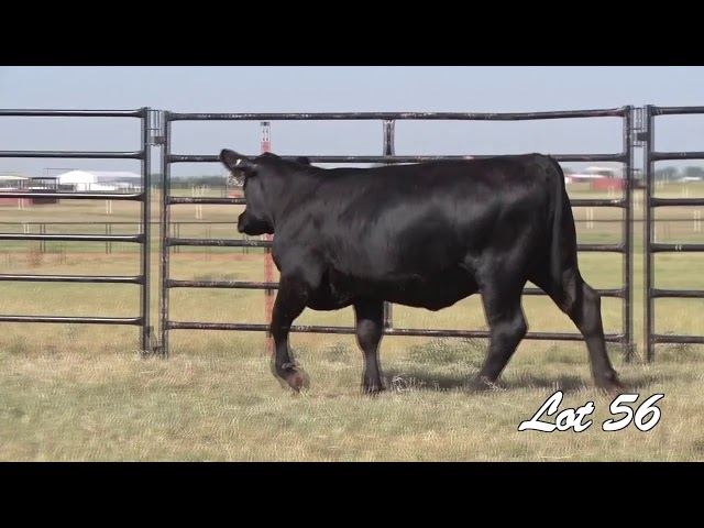 Pollard Farms Lot 56