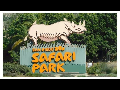 SAN DIEGO ZOO SAFARI PARK RIDE!!!
