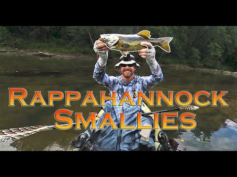 Swimming With SNAKEHEAD FRY, BASS FISHING, And Kayaking The Rappahannock River In Virginia