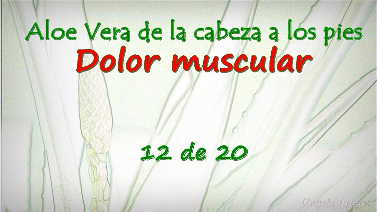 Aloe Vera de la cabeza a los pies 12 de 20. Dolor muscular - YouTube