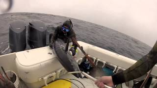 Texas Wahoo Hunt