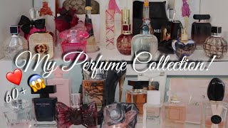 My Designer Perfume Collection | 2019