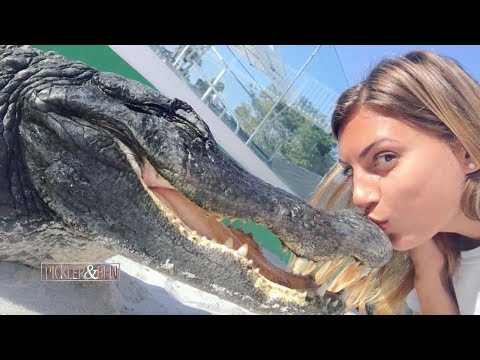 Meet 'Gator Girl,' The Woman Who Rescues and Wrestles Alligators - Pickler & Ben