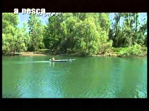 A pesca con Afro puntate 3-4 stagione 2009из YouTube · Длительность: 1 час15 с