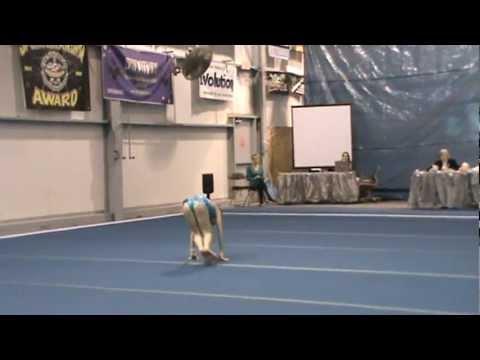 Rhythmic Gymnastics Level 6, Floor