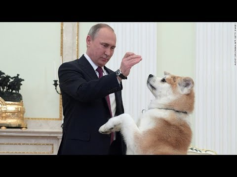 Putin has Worst Trained Dog Of any Head of State