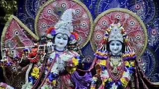 Sri Sri RadhaRasbihari Sringar Aarti Darshan on 24th Jan 2018 from ISKCON Juhu thumbnail