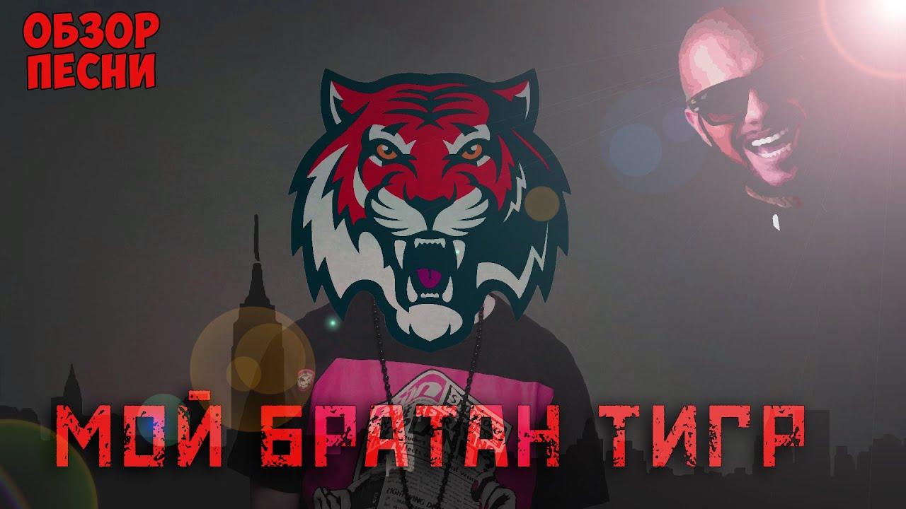 Мой братан тигр: тимати снялся в новом клипе l'one новости.