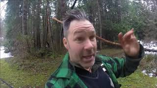 CUTTING TREES WITH POWER SAWS AND AXES