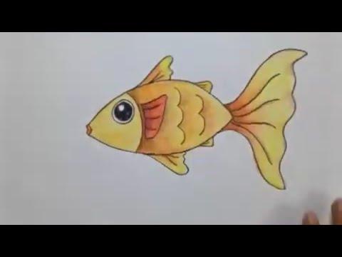 Menggambar Dan Mewarnai Fauna Ikan Dengan Sederhana Bagi Pemula Dan