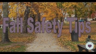 FALL SAFETY TIPS SAVA REPORT