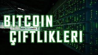 çiftlik Bitcoin