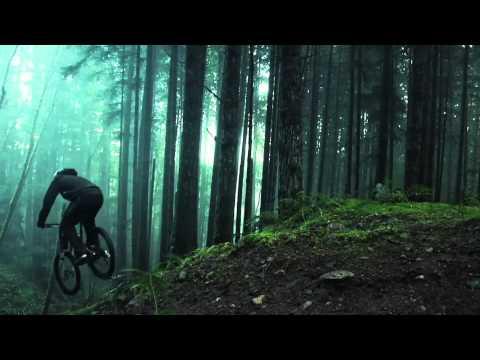 Amazing Freeride Forest