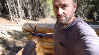 Off Grid Log Cabin Build - Scribe Fit Part 1