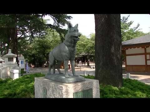 軍犬慰霊像 靖国神社