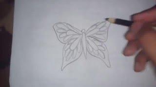 Cara menggambar 3d tiga dimensi gambar kupu-kupu
