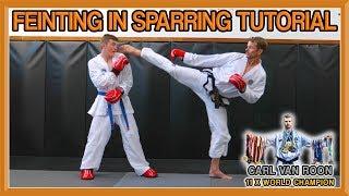 Taekwondo Sparring | How to Feint (Fake) | Van Roon Tutorial