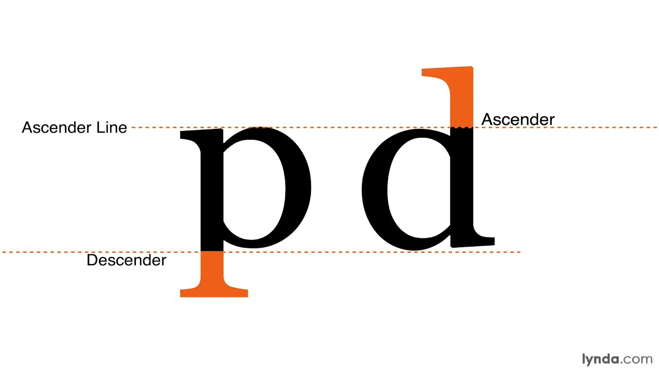 Typography Tutorial Anatomy Parts And Shapes Of Type