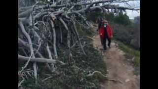 LA CUERDA ESCURIALENSE. ALTO DEL LEON - EL ESCORIAL. Grupo de Montaña ACUDE