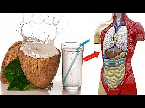 If You Drink Coconut Water Daily Then This Will Happen To Your Body – Benefits Of Coconut Water