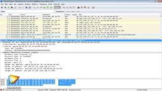 Tutoriel TCP/IP : Utiliser une en-tête IP avec un analyseur réseau | video2brain.com