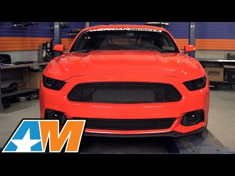 2015-2017 Mustang T-REX Upper Class-Series Black Mesh Grille Review & Install