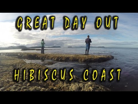 North Auckland Snapper Hunt - Hibiscus Coast ,NZ