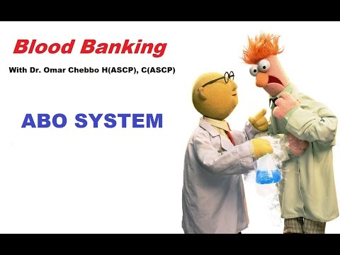 Blood Banking: The ABO System