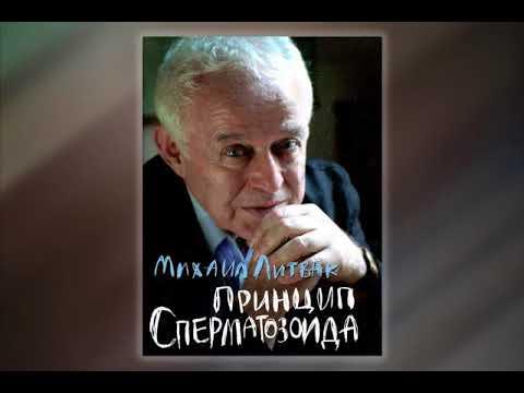 """211 лайфхаков от Михаила Литвака из книги """"Принцип сперматозоида""""."""