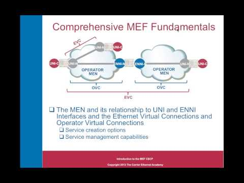 Everything You've Wanted to Know about the MEF CECP Certification