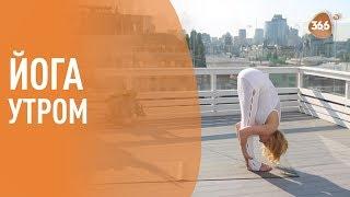 ЙОГА: Утренний комплекс упражнений на 30 минут. Territory of yoga со Светланой Масленниковой