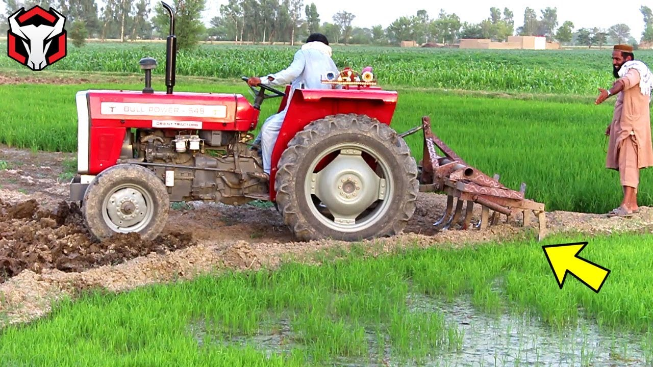 Bull Power MTZ 549 Working With Cultivator Agriculture