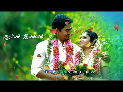 Watsapp Status // Saamanthi Poovukkum Sayankala Kaatrukkum Song Tamil Watsapp Status