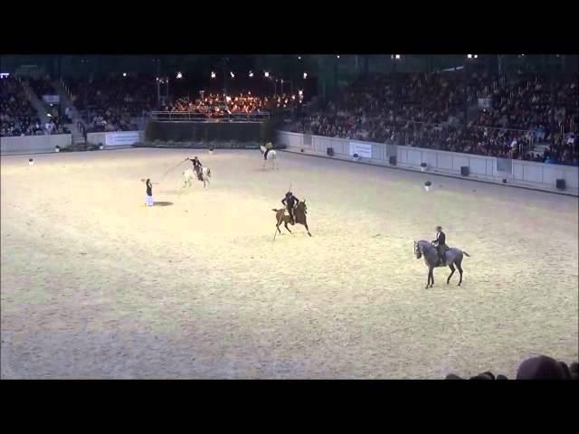 """""""Espana Cani"""" & """"El Gato Montes"""" CHIO AACHEN 2015 - Pferd und Sinfonie"""