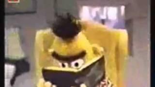 Bert en Ernie kakhoofd chipmunk versie