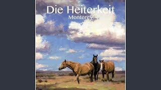 Die ganzen müden Pferde