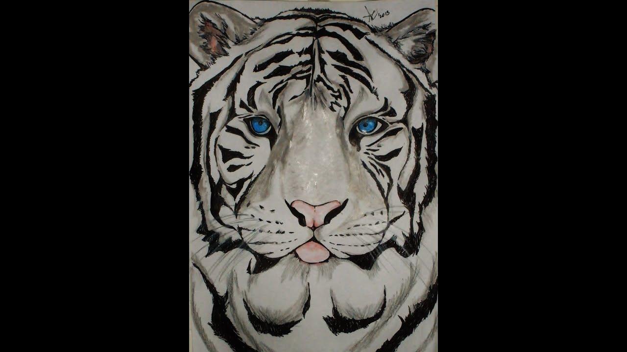 Dibujar un tigre  Draw a tiger Time Lapse  YouTube