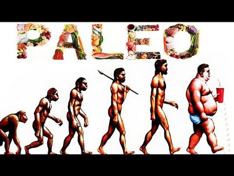 paleolithic definition