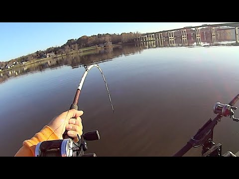 Fishing A Steam Plant For BIG Catfish
