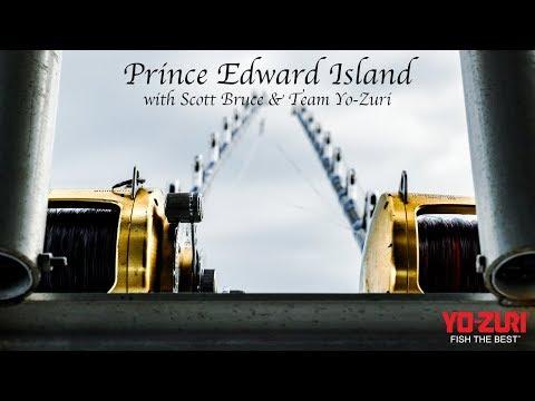 Bluefin Tuna Fishing At Prince Edward Island: Scott Bruce Charters